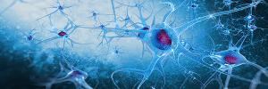 rewire your brain 2